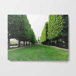 Square trees in Paris Metal Print