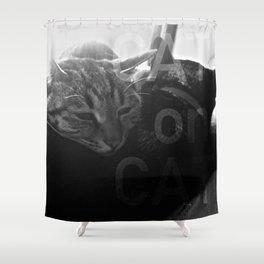 Cat on Cat Shower Curtain