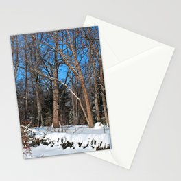 Metaphysical Merriment Stationery Cards