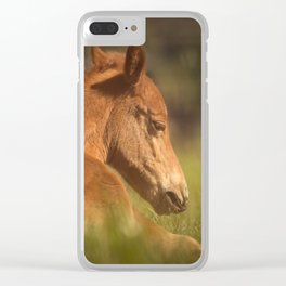 Cute Foal Laying Down Clear iPhone Case