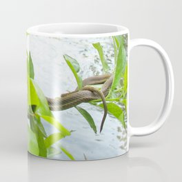 Watercolor Snake, Queen Snake 05, Eno River, North Carolina, Sunbathing on the Eno Coffee Mug