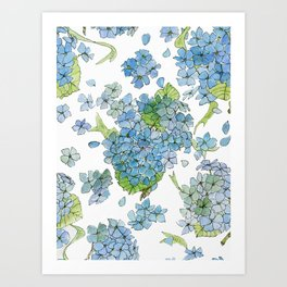 Blue Hydrangea Watercolor Art Print