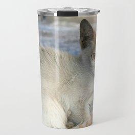 Kitten under a car Travel Mug