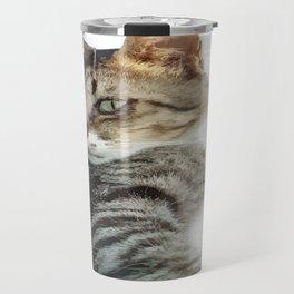 Tabby Cat Isolated Background Travel Mug