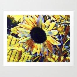Sunflower After The Storm Art Print