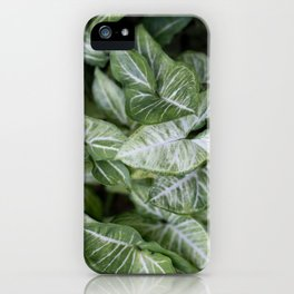 Lush Leaves iPhone Case