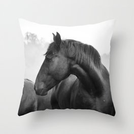 Black & White Horse Photograph ~ Cades Cove Riding Stables Tennessee Throw Pillow