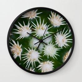 Cactus Close Up Wall Clock