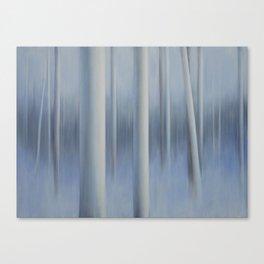 Winter Air 3 Canvas Print