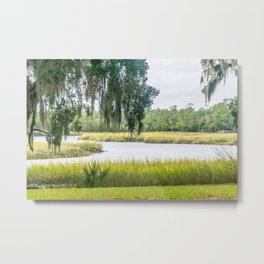 By the Bayou Metal Print