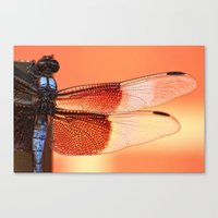 stained glass Canvas Prints featuring Stained Glass by Mark Alder