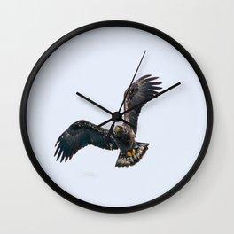 Immature, yet regal Wall Clock