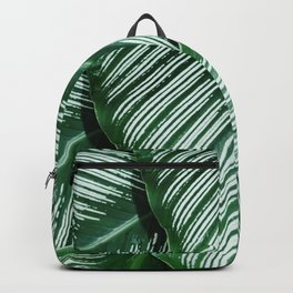 Green Tropical Leaves with White Stripes Closeup Backpack