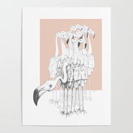 Weird & Wonderful: Flamingo Boys Poster
