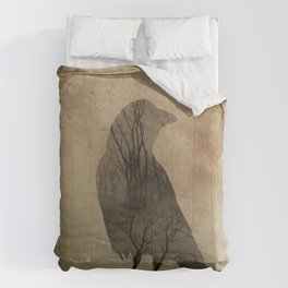 Old Light Comforters