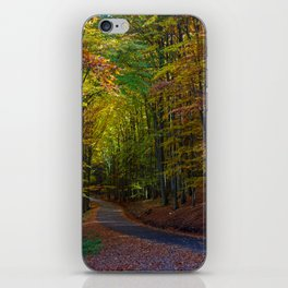 Drizzly autumn iPhone Skin