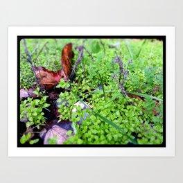 341 Mini landscape Art Print