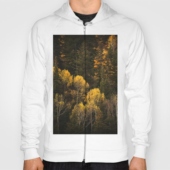Autumn Trees Hoody