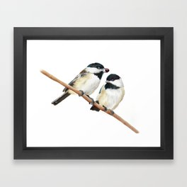 Black Capped Chickadees Framed Art Print
