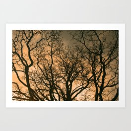 fractal tree Art Print