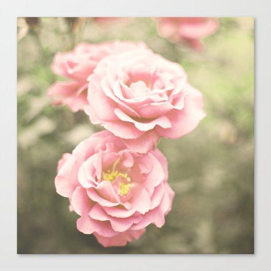 Haze Roses (Retro and Vintage Flower Photography) Canvas Print