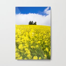 Flower Power in Langhe region Metal Print