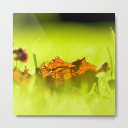 On Fire. Metal Print