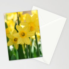 Spring Daffodils Stationery Cards