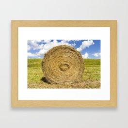 straw grass Framed Art Print