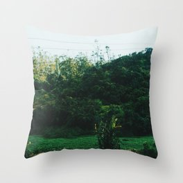 Sri Lankan Train ride Throw Pillow