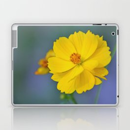 Coreopsis 3 Laptop & iPad Skin