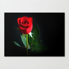 My One Love Canvas Print