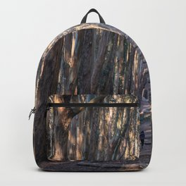 Andy Goldsworthy Wood Line, San Francisco Photography, California Fine Art, Woodland, Enchanted Forest Home Decor Backpack