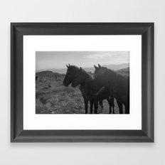 Desert Horses Framed Art Print