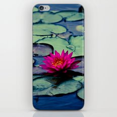Twilight at the Lily Pond iPhone & iPod Skin