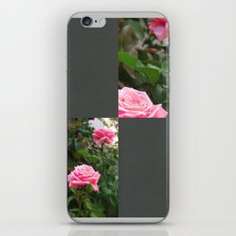 Pink Roses in Anzures 5  Blank Q6F0 iPhone Skin