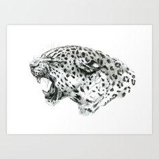 Panther roar sketch Art Print
