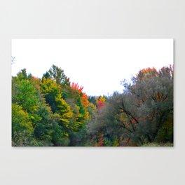 Rivière à l'automne Canvas Print