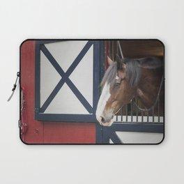 Patriotic Pony Laptop Sleeve