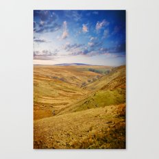 Down on the Valley Canvas Print