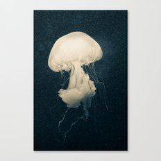 Intrigue Canvas Print
