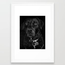 Black Lab Framed Art Print