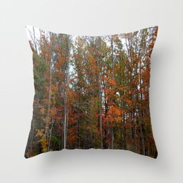 Colorful Cuyahoga Valley Throw Pillow