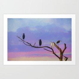 Coastal Birds at Sunset Art Print