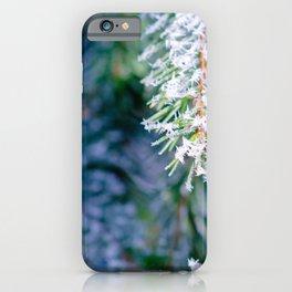 Bitter Cold, Cool Fir Tree iPhone Case