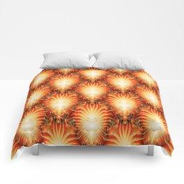 Clusters of Sun Stars... Comforters
