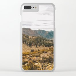 Patagonian Estepa Clear iPhone Case