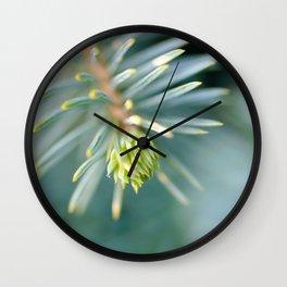Tip of the fir tree branch Wall Clock