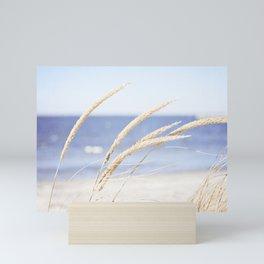 Beach Grass Blue Photography, Coastal Ocean Landscape, Sea Seashore Seascape Shore Mini Art Print