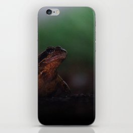 The Disappointment iPhone Skin